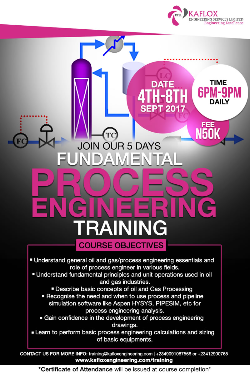 process engineering training